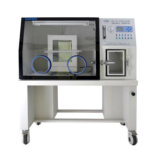 上海跃进厌氧培养箱(液晶屏显示)HYQX-Ⅱ